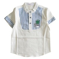 Cutevina~Boys Fashion Shirt / Kemeja Model Koko Anak 2-9th (GZ17025)