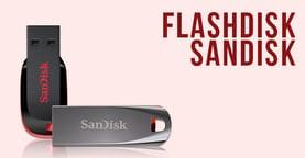 Flash Disk Sandisk