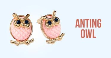 Anting Owl