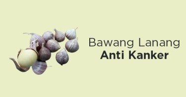 Bawang Lanang