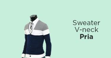 Sweater V-Neck Pria