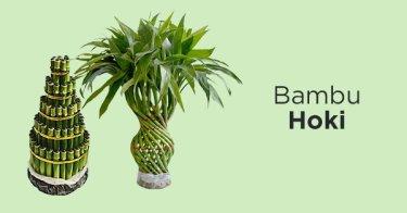 Bambu Hoki