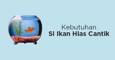 Perlengkapan Ikan Hias