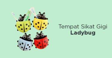 Tempat Sikat Gigi Ladybug