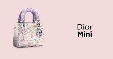Dior Mini