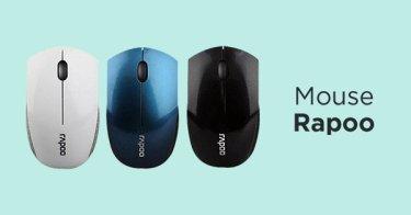 Mouse Rapoo