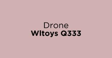 Drone Wltoys Q333