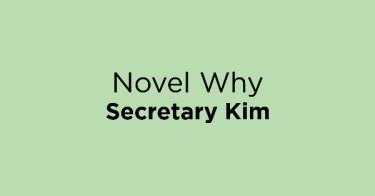 Novel Why Secretary Kim