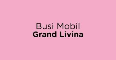 Busi Mobil Grand Livina
