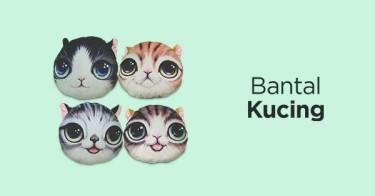 Bantal Kucing